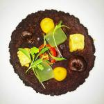XVII encuentros gastronómico - eldisparatedejavi